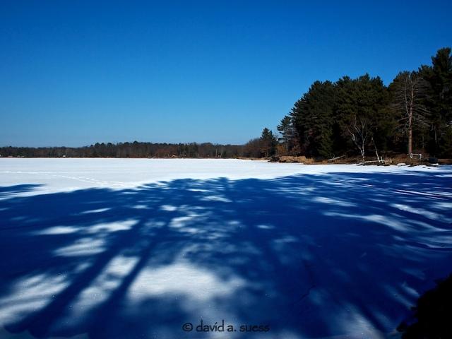 Long Blue Shadows