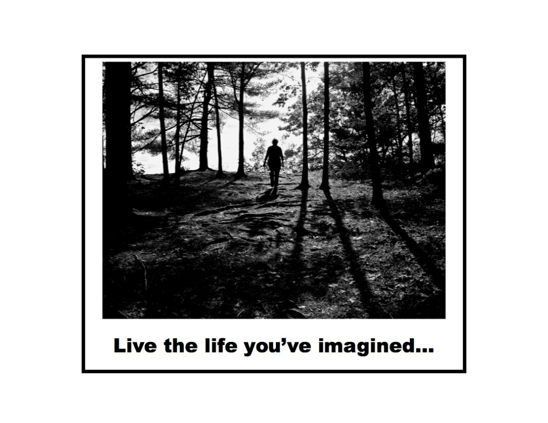 Live the life you've imagined...