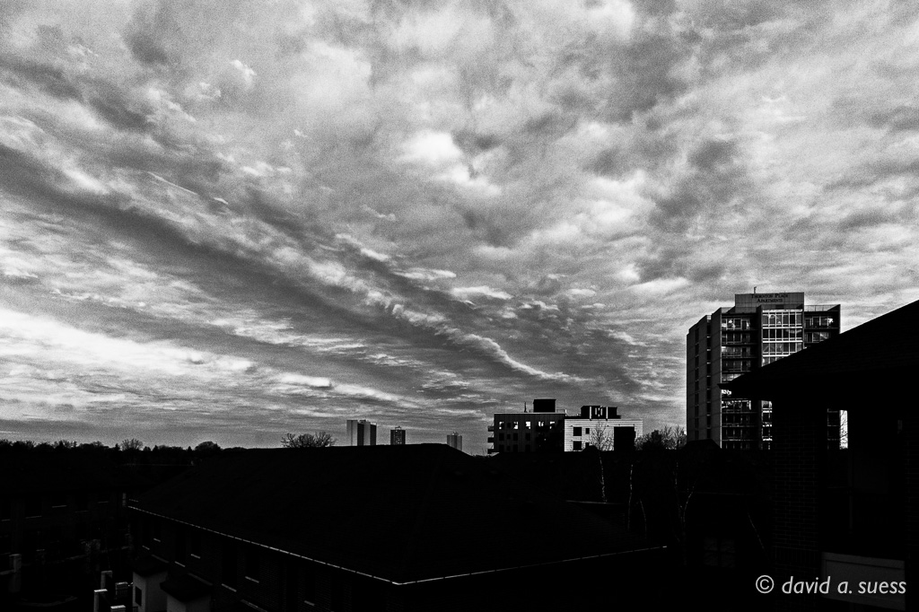 Morning Breaks Over East River Mews